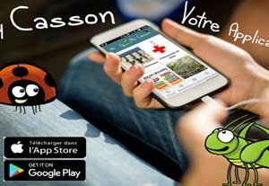 application-my-casson-preview.jpg